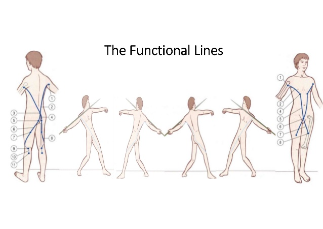 the_functional_line